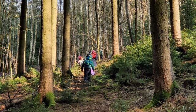 WaldArt Herbst/Winter 2021