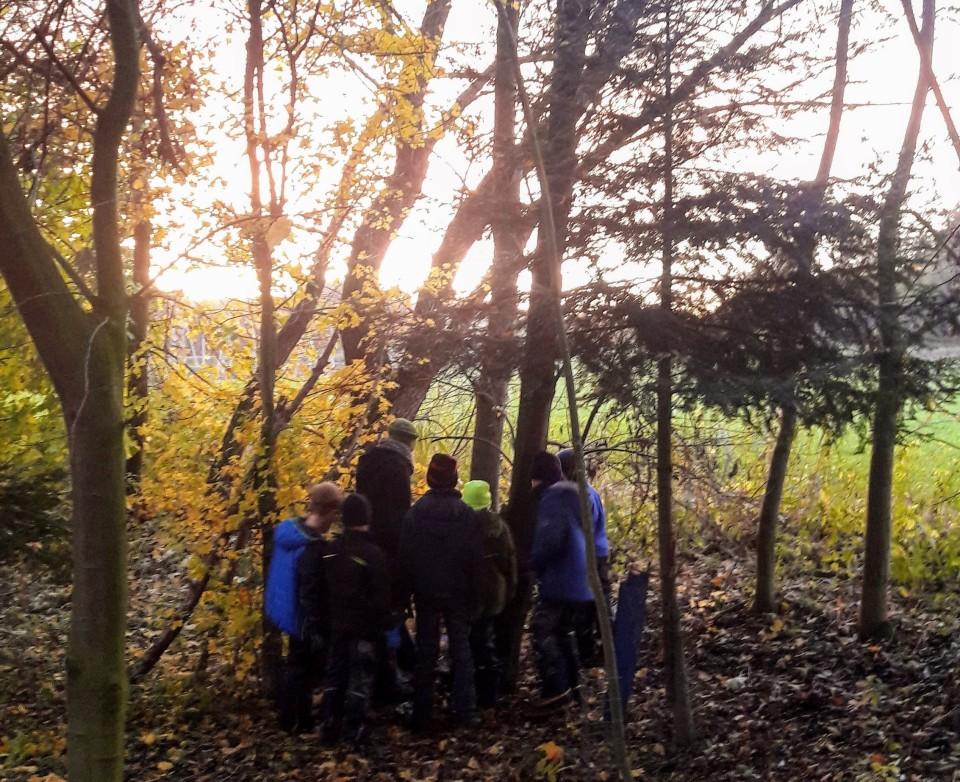 WaldArt - Start der Wald-und Naturerlebnissgruppen in Freising